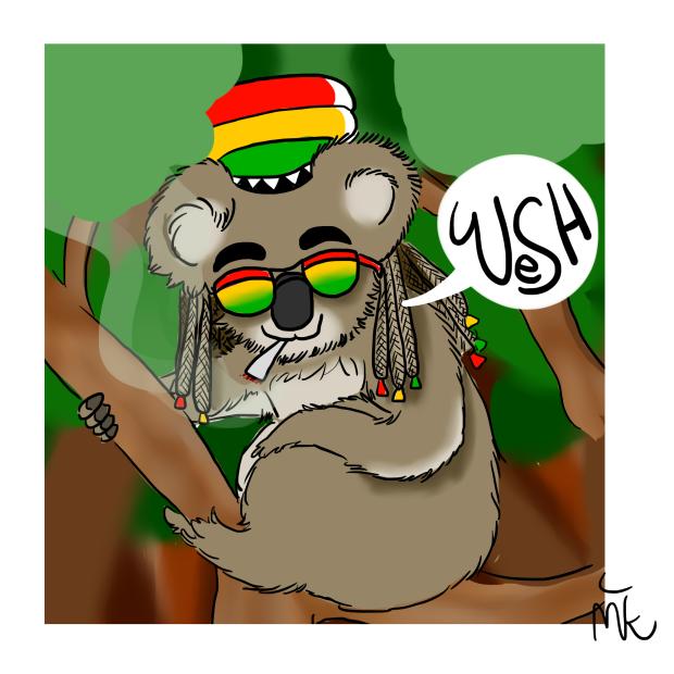 rasta koala
